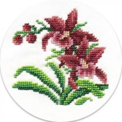 Дикие орхидеи, набор для вышивания бисером, 12х12см, 10цветов Кларт