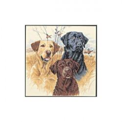 Охотничьи собаки, набор для вышивания крестиком, 30х30см, 14цветов Dimensions