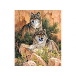 Пара волков, набор для изготовления картины стразами 38х55см 28цв. полная выкладка, АЖ