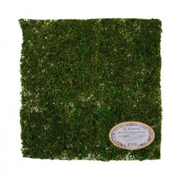 Зеленый, лист из натурального мха, 30х30см. Blumentag
