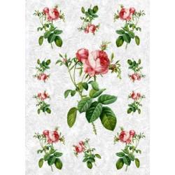 Садовая роза, бумага рисовая для декупажа, 32х45 см. Love2Art
