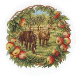 Кони в яблоках, набор для вышивания крестиком, 27х27см, 31цвет Panna