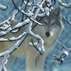Волк в лесу, канва для вышивки бисером МП-студия