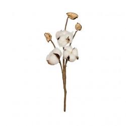 Веточка хлопка, декоративный элемент для флористики 30см, 1шт. Blumentag