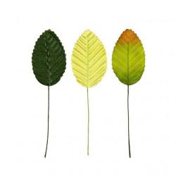 Листья, декоративные элементы 5х3см 10шт. Blumentag