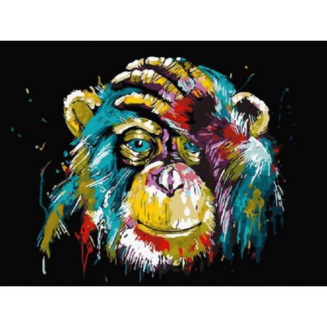Радужная обезьяна, раскраска по номерам на холсте 40х50см 19цв Планета Картин