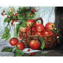 Яблоки и земляника, раскраска по номерам на холсте 40х50см 18цв Планета Картин