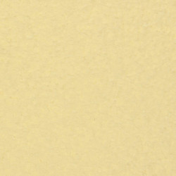 Кремовая (Cream), краска акриловая матовая 50мл VISTA-ARTISTA