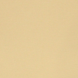 Телесная (Flesh), краска акриловая матовая 50мл VISTA-ARTISTA