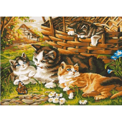 Котята на лужайке, раскраска по номерам на холсте 30х40см 18цв Планета Картин