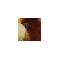 Осень(ассорти), декоративные перья, 3гр, Mr. Painter