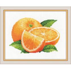 Фруктовое ассорти.Апельсины, набор для вышивания крестиком, 20х14см, мулине хлопок 13цветов Овен