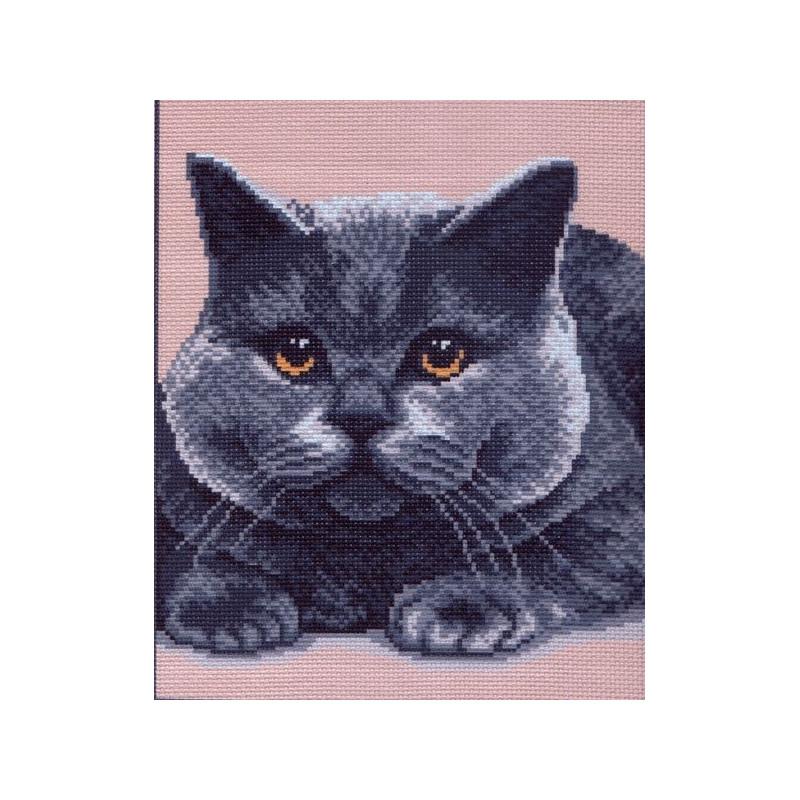 Матренин посад кот