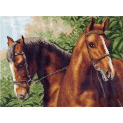 Пара лошадей, канва с рисунком для вышивки нитками 37х49см. Матрёнин посад