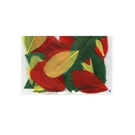 Красный/желтый/зеленый, декоративные перья 5-6см 3гр±0,5гр, Mr. Painter