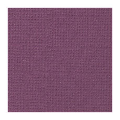 Молодой виноград (фиолетовый), бумага для скрапбукинга(кардсток) 216г/м2, 30.5x30.5 см, Mr.Painter