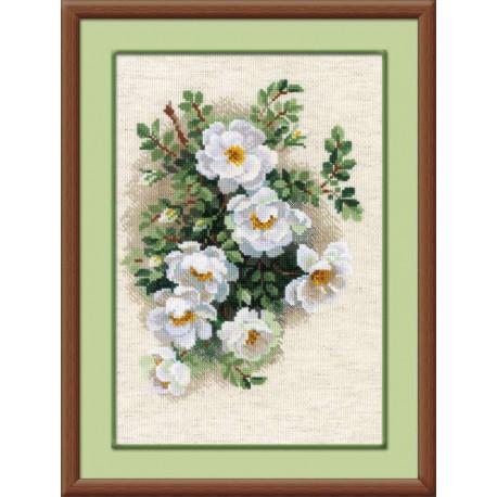 Белый шиповник, набор для вышивания крестиком, 21х30см, нитки шерсть Safil 17цветов Риолис