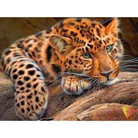 Леопард, набор для изготовления картины стразами 40х30см 26цв. полная выкладка АЖ