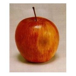 Деревенское яблоко, декоративный элемент для флористики 3см, 6шт. Blumentag