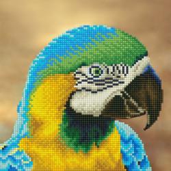Попугай, кристальная мозаика 25x25см, частичное заполнение Фрея