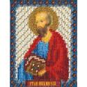 Павел, набор для вышивания бисером 9х11см 14цветов Panna