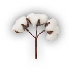 Хлопок, декоративный элемент для флористики. Blumentag