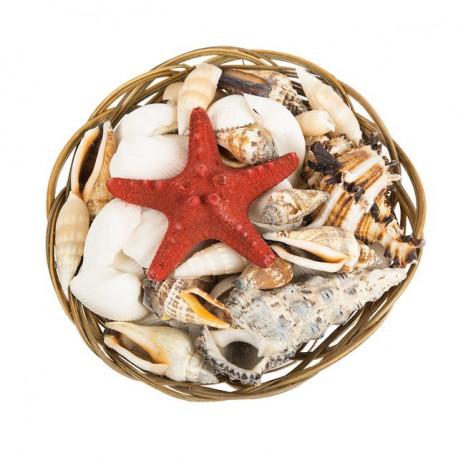 Красная морская звезда, ракушки декоративные в плетенке 300гр. Zlatka