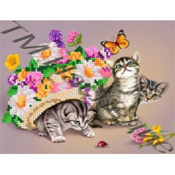 Котята, набор для изготовления мозаики круглыми стразами 20х24см 18цв. частичная выкладка