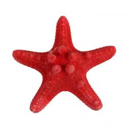 Красный, декоративная морская звезда, 7-10см. Zlatka