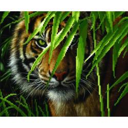 Тигр, канва для вышивки бисером МП-студия