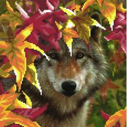 Волк, канва для вышивки бисером МП-студия