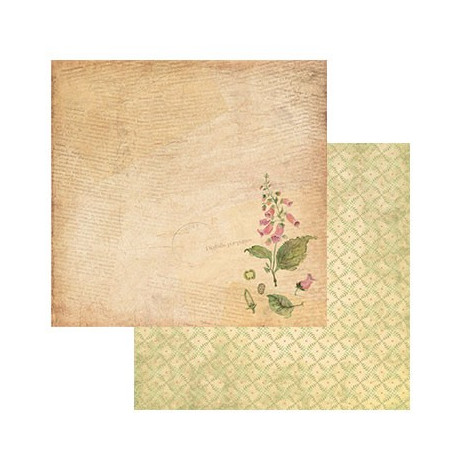 Ботаника, бумага для скрапбукинга 30.5x30.5 см двусторонняя 190 г/м2, Mr.Painter