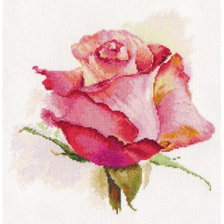Дыхание розы. Очарование, набор для вышивания крестиком, 24х24см, 34цвета Алиса