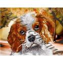 Милый щенок, ткань с рисунком для вышивания бисером 19х25см 11цв. Наследие