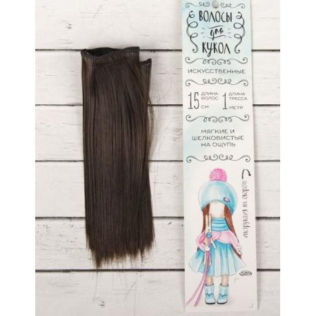 Каштан, прямые волосы для кукол 15см на трессе 100см цв.№8 SL