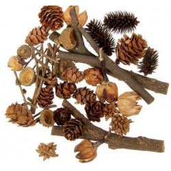 Дары леса, набор природного декора АртУзор
