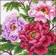 Пионы, набор для вышивания крестиком 41х41см, цветов. Матрёнин посад