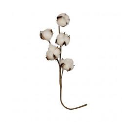 Веточка хлопка, декоративный элемент для флористики 40см, 1шт. Blumentag