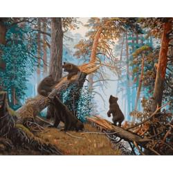 Утро в сосновом лесу, раскраска по номерам на холсте 40х50см 30цв Фрея