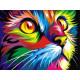 Радужный кот (Ваю Ромдони), картина по номерам на холсте 40х50см 17цв Original