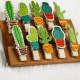 Кактусы, прищепки декоративные 10шт АУ