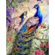 Райские павлины, картина по номерам на холсте 40х50см 28цв Original