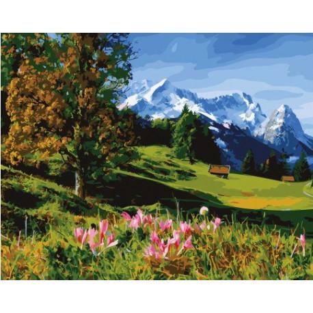 Горные луга, картина по номерам на холсте 40х50см 25цв Original
