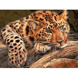 Задумчивый леопард, картина по номерам на холсте 30х40см 17цв Original