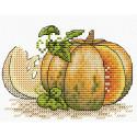 Румяная тыква, набор для вышивания 11х8,5см 11цветов Жар-птица