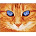 Голубоглазый рыжий кот, картина по номерам на холсте 40х50см 20цв Original