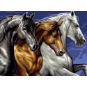 Лошади, картина по номерам на холсте 30х40см 18цв Original