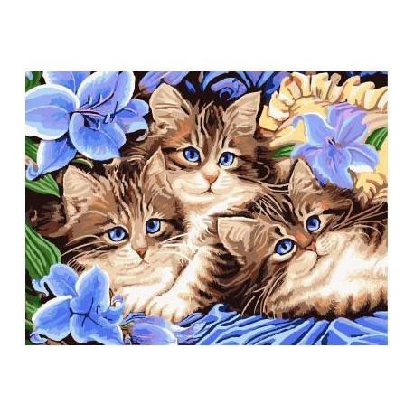 Котята в цветах, картина по номерам на холсте 30х40см 23цв Original
