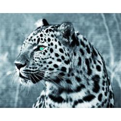 Леопард, картина круглыми стразами 30х40см 12цв полная выкладка на подрамнике TS