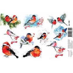 Снегири рисованные, водорастворимая бумага с картинками 17х12см